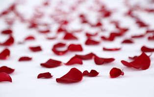 Offre spécial Saint-Valentin : Week-end romantique et détente près de Nantes