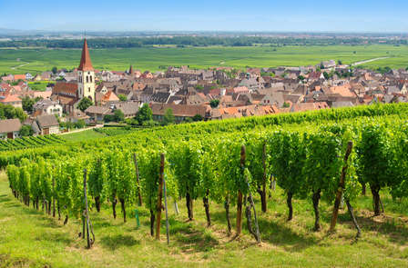 Offre spéciale : Séjour visite et dégustation à Niederbronn-les-Bains