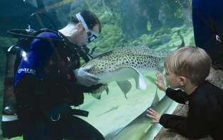 Familieweekend met bezoek aan Aquatopia