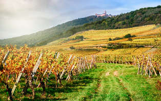 Offre spéciale Été : Week-end détente sur la Route des vins en Alsace