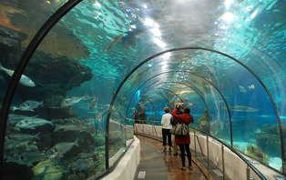 Week-end en famille avec entrées pour l'Aquarium de Barcelone