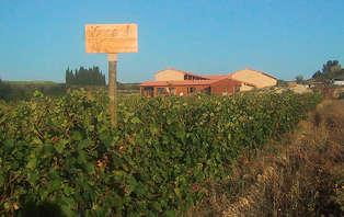 Offre Spéciale: Escapade en chambre d'hôtes près d'Avignon