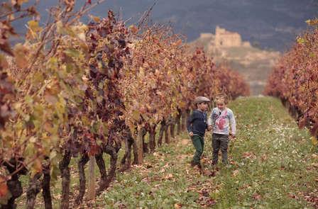 Visita Haro con una exquisita visita a Bodegas Vivanco DO Rioja