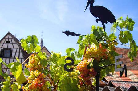 Offre spéciale Nuit Offerte : Séjour de détente et de découverte en Alsace