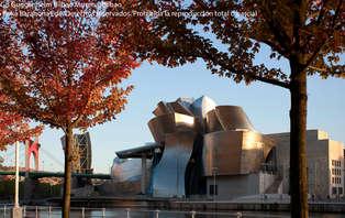 Escapada Cultural con entradas al Museo Guggenheim