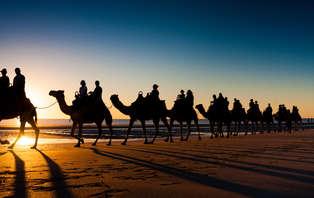 Aventura en Camello por Doñana: experiencia Lawrence De Arabia a la andaluza (desde 2 noches)