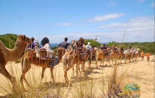 Escapada a Sevilla con aventura en camello por Doñana: experiencia oriental (desde 2 noches)