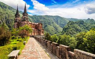 Oferta Especial: Escapada en los Picos de Europa con visita al museo de Covadonga (desde 2 noches)
