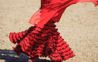 Escapada con entradas a Tablao flamenco y copa en Madrid (desde 2 noches)