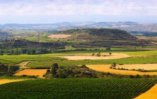 Descubre La Rioja: Escapada en Haro con detalle de bienvenida