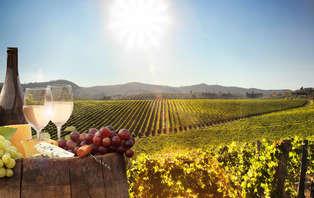 Escapada relax con spa y visita a bodega D.O Rioja