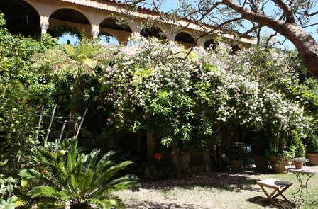 Escapade dans un jardin secret en plein coeur de Nîmes
