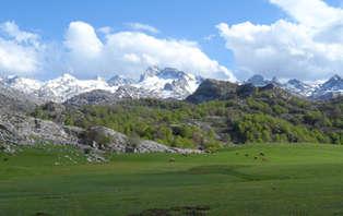 Escapada Naturaleza en el parque nacional de los Picos de Europa con visita de Bodega y degustación