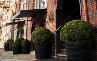 Escapada destacada cerca de la Plaza de los Museos en Ámsterdam