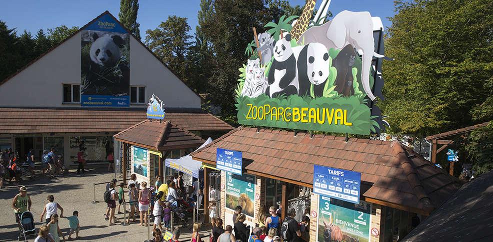 Week end center parcs chaumont sur tharonne avec arriv e for Chambre zoo de beauval