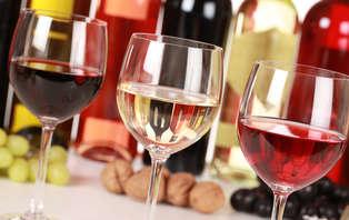 Visite guidée et dégustation de vin à Soave (à partir de 2 nuits)