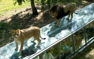 Week-end en cottage premium jusqu'à 4 personnes avec entrée au Zoo de Thoiry (3 nuits)