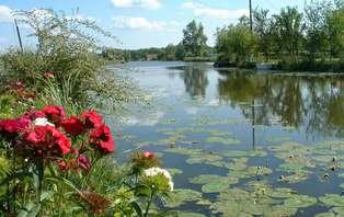 Offre spéciale : Week-end familiale avec croisière sur le marais Audomarois
