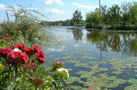 Offre spéciale : Week-end familial avec croisière sur le marais Audomarois