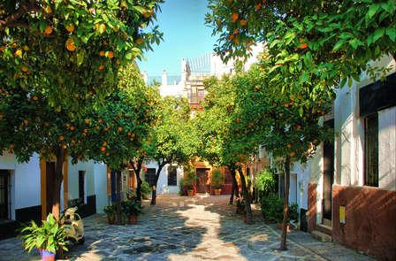 Escapada placeres de Sevilla. Disfruta de la ciudad con vino y ración de jamón y ruta en bicicleta
