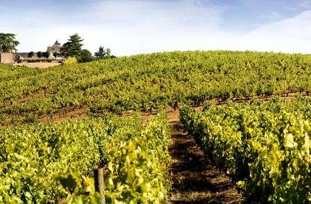 Week-end à Angers avec dégustation au Château Soucherie