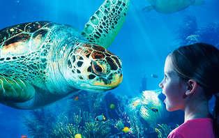 Gezellig familieweekend aan zee met bezoek aan Sealife