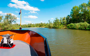 Culture et découverte du parc national du Biesbosch : entrée au musée et balade en bateau