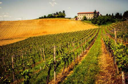 Weekend rustico nel Monferrato vicino ad Acqui Terme