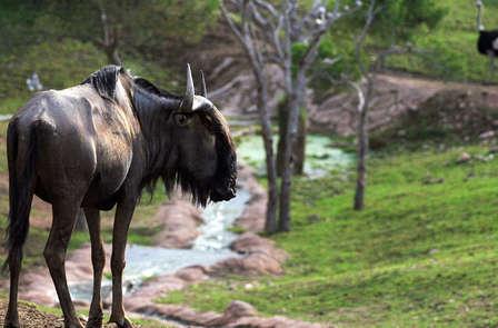 Escapada a Terra Natura en media pensión cerca de Murcia