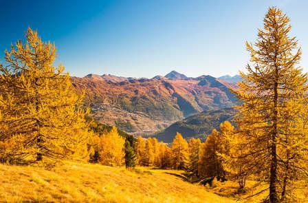 Vacaciones en las bellas montañas de Sestriere (desde 7 noches)