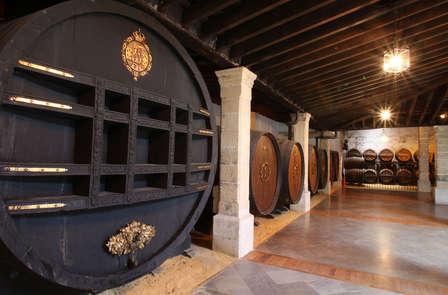 Bezoek Andalusië en de bodegas van Tio Pepe