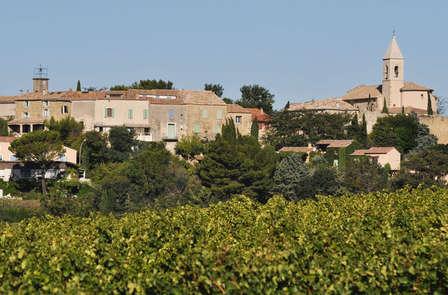 Pause découverte avec dégustation de vin aux portes d'Avignon