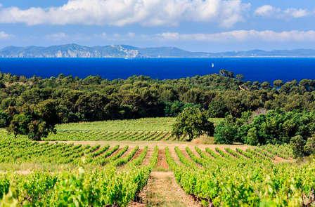 Week-end avec dégustation de vins à Beaune