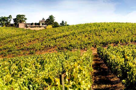 Week-end avec dégustation dans un château au bord de la Sarthe