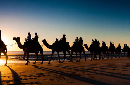 Escapada con paseo en camello por el Parque de Doñana