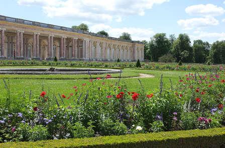 Scopri Versailles e i suoi tesori: soggiorno con una vista alla Reggia