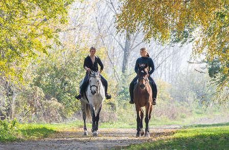 Escapada Naturaleza con ruta a caballo por la finca del Palacio de Sorribas