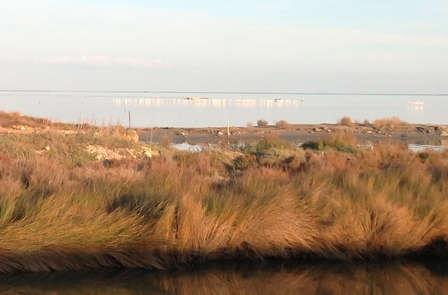 Descubre el Delta del Ebro con esta escapada con crucero y detalles románticos