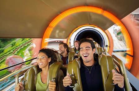 Magia en pareja con entrada para los parques Disney®