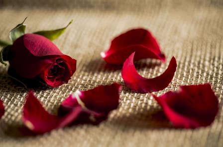 Disfruta de este San Valentin en pareja (desde 2 noches)