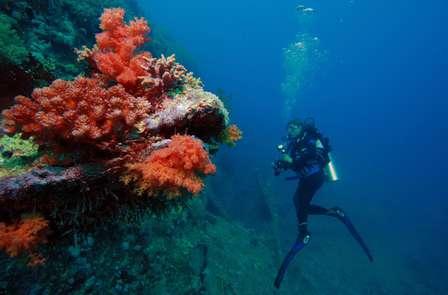 Week-end à la découverte des fonds marin de la French Riviera avec baptème de plongée
