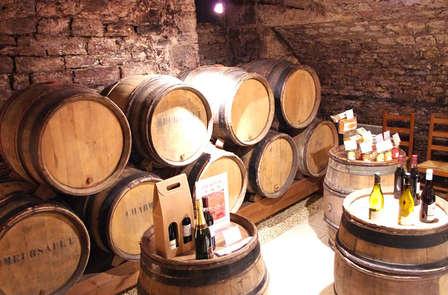Visite de cave avec dégustation sur la route des vins à Obernai