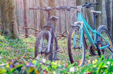 ¡Oferta Apertura! Bici y media pensión en Cofrentes