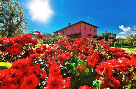 Charme e degustazione di vino tra le colline del Chianti