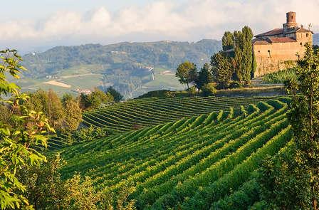 Weekend alla scoperta del vino in un castello del Monferrato