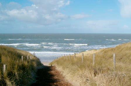 Bocanada de aire fresco y disfrute gastronómico en la costa holandesa