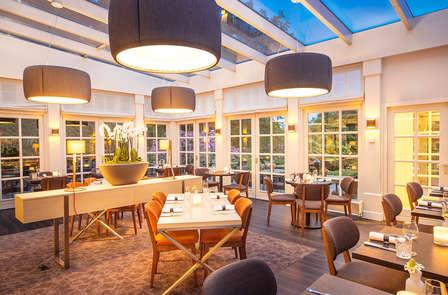 Gastronomía y relax en la Veluwe