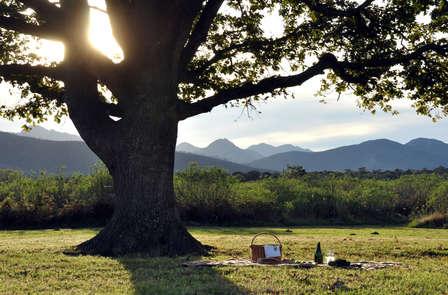Especial naturaleza: escapada con picnic y cena en pleno parque natural