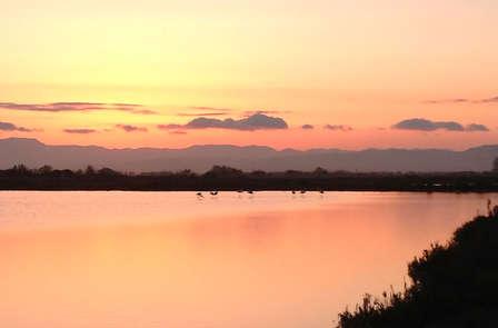 Escapada en l'Ampolla con una cena y crucero por el Delta del Ebro (desde 2 noches)