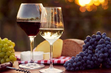 Scopri le Langhe a Cherasco con una cena e il museo del vino WiMu